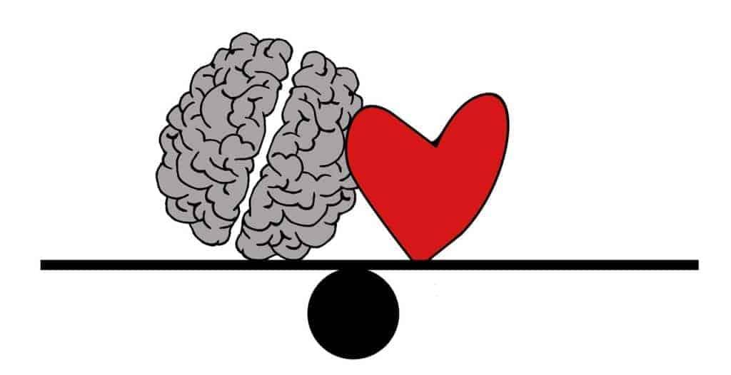 Bild eines gezeichneten Herzens und des Gehirns