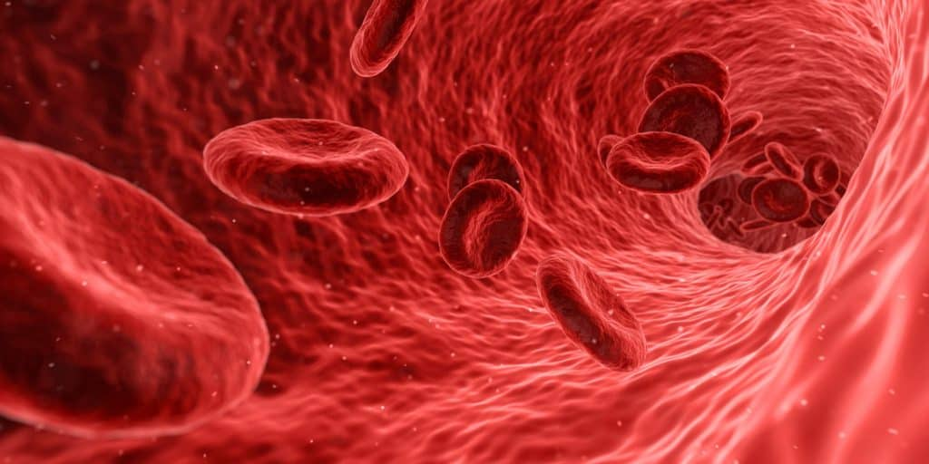 Das Wurzelchakra beeinflußt die Versorgung des Herzens mit Sauerstoff und Energie