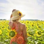 Solarplexuschakra-öffnen-Sonnenblumen