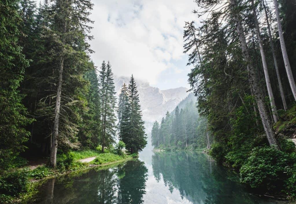 Herrlicher See im Wald