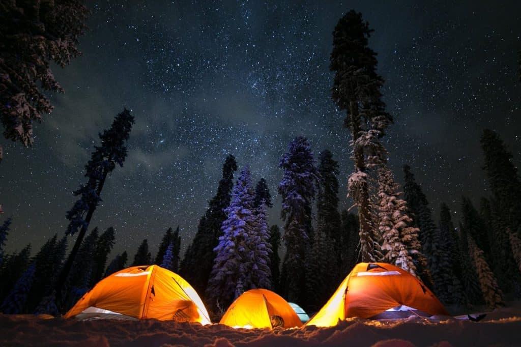 Eine Nacht im Wald campen