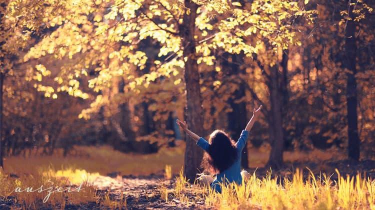 Meditieren-im-Wald