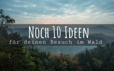 10 weitere aufregende Ideen für deinen Besuch im Wald (Video)