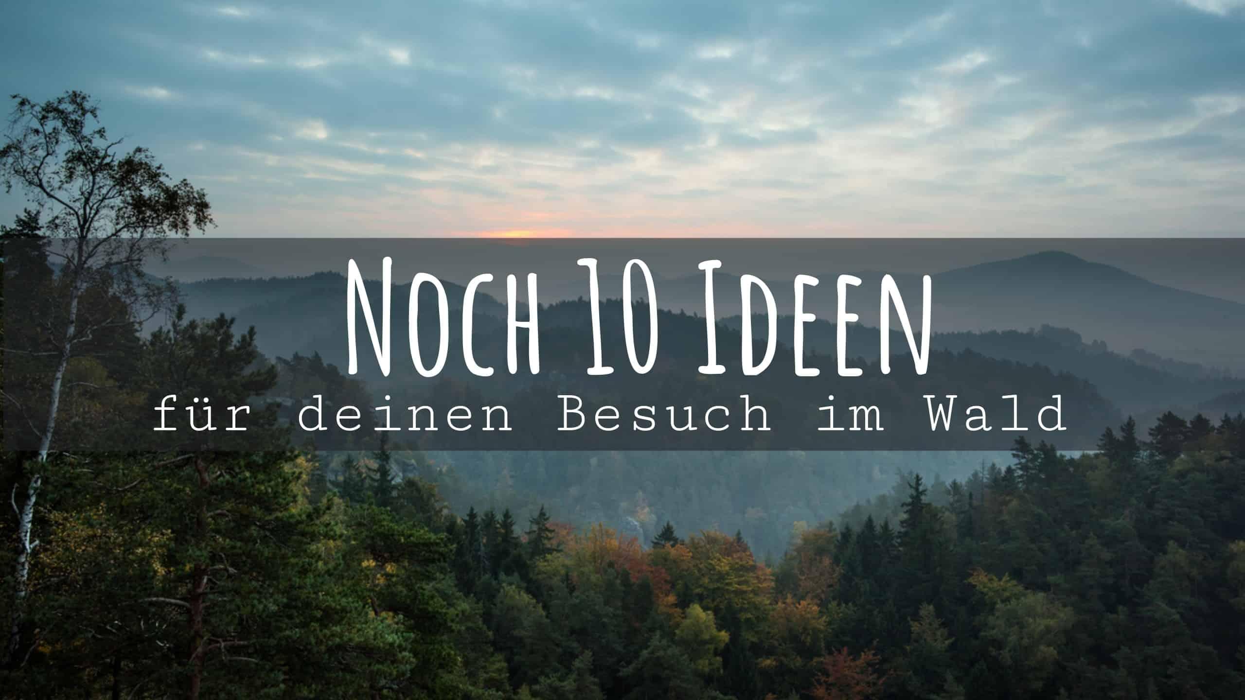 Noch_10_Ideen_für_deinen_Besuch_im_Wald