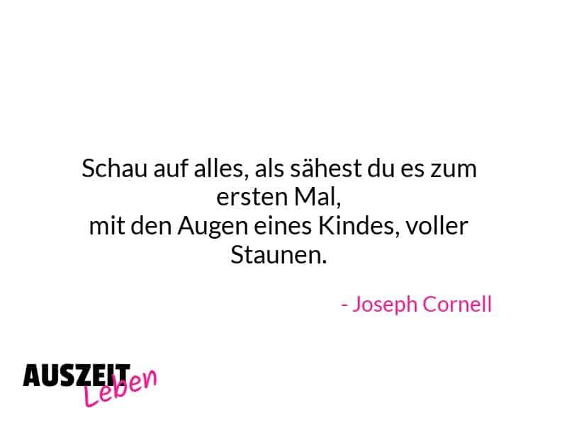 Zitat_der_Woche_Joseph_Cornell_100720
